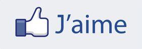 logo fb j'aime